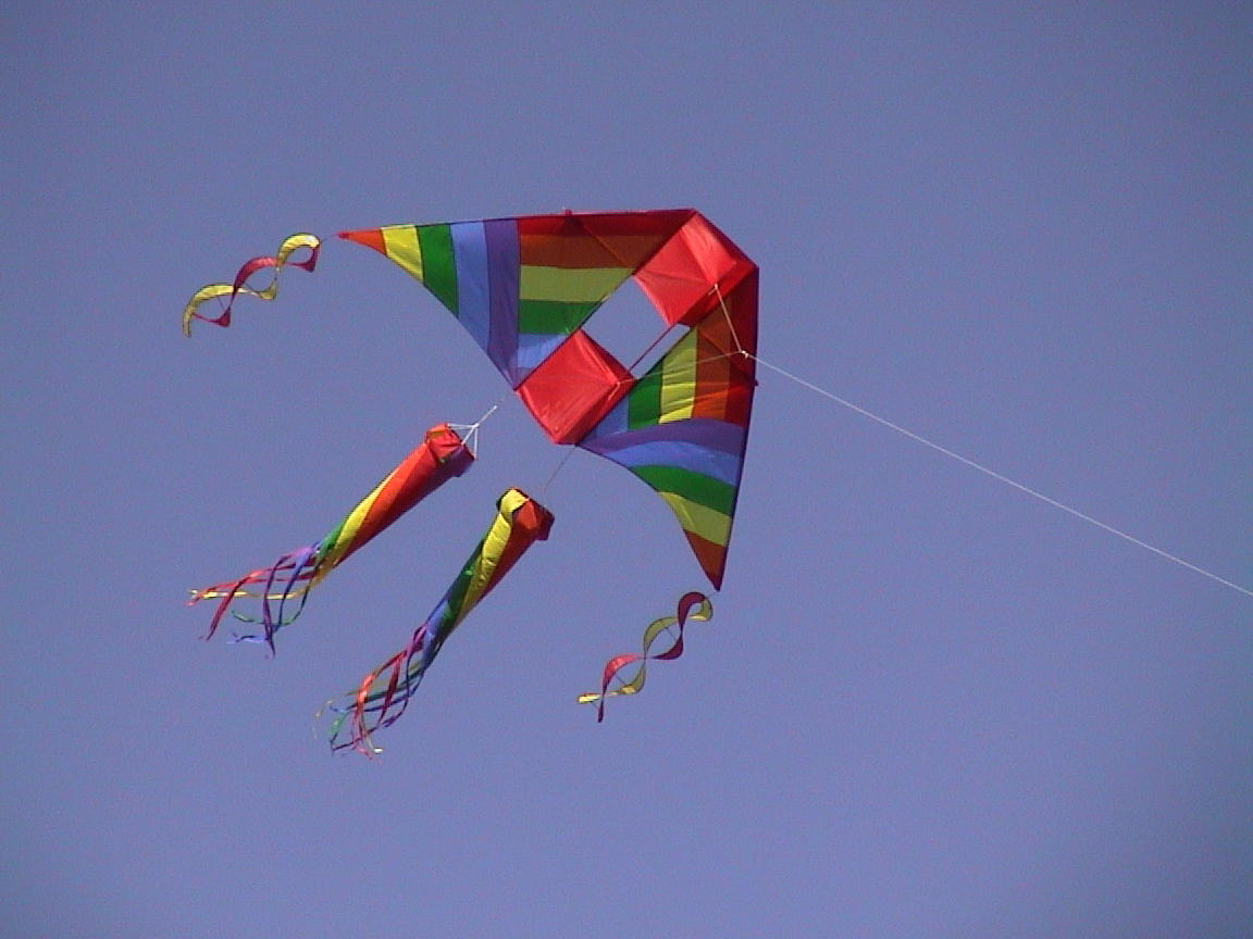 kite flying videos