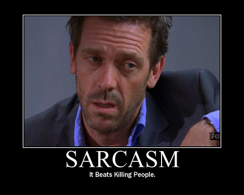 Sarcasm - Love it or Leave it?