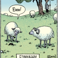 E is for Etymology