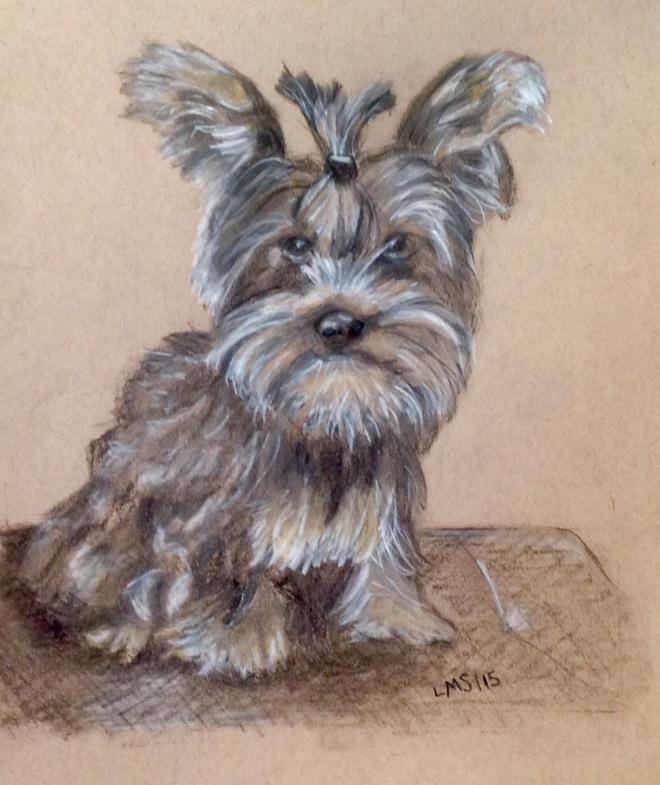 Sketch of a little dog I never met.